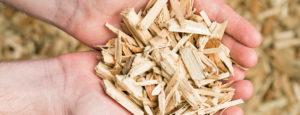 Holzschnitzel für eine Schnitzelheizung der Firma Haesler AG.